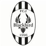FC Jyvaskyla Blackbird